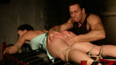 Kinky brunette beauty Clarisse has a thing for bondage and rough sex