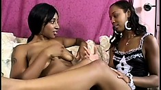 Adorable Caramel Lesbians Strip Off Their Clothes And Enjoy Some Wild Lesbian Fun