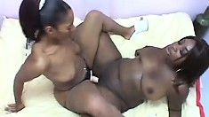 Sensual ebony amateurs wreck each other's amazing cunts with a double dildo