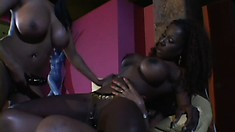 Fascinating black girls get together and enjoy an exciting lesbian threesome