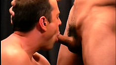 Ripped gay hunk shoves his prick deep inside his boy toy's butt